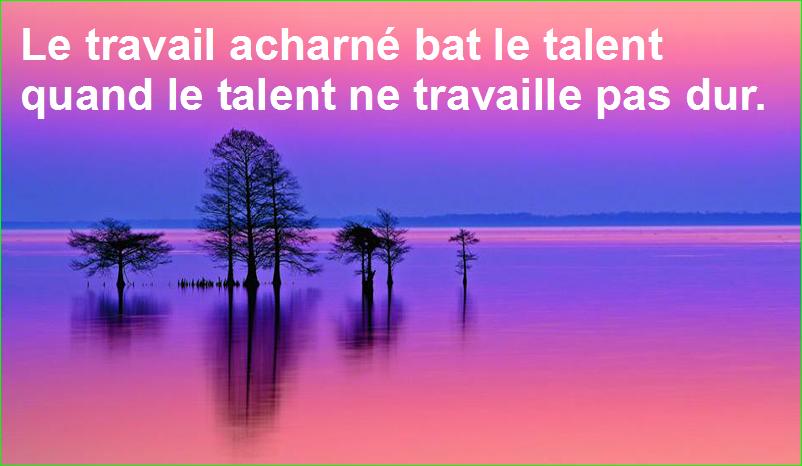 citation aurélien malecki. Le travail acharné bat le talent quand le talent ne travaille pas dur.
