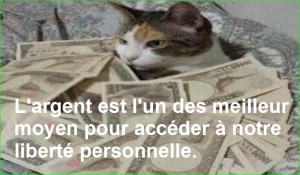 L'argent est l'un des meilleur moyen pour accéder à notre liberté personnelle. Citations Populaires et Célèbres Proverbes Aurélien Malecki