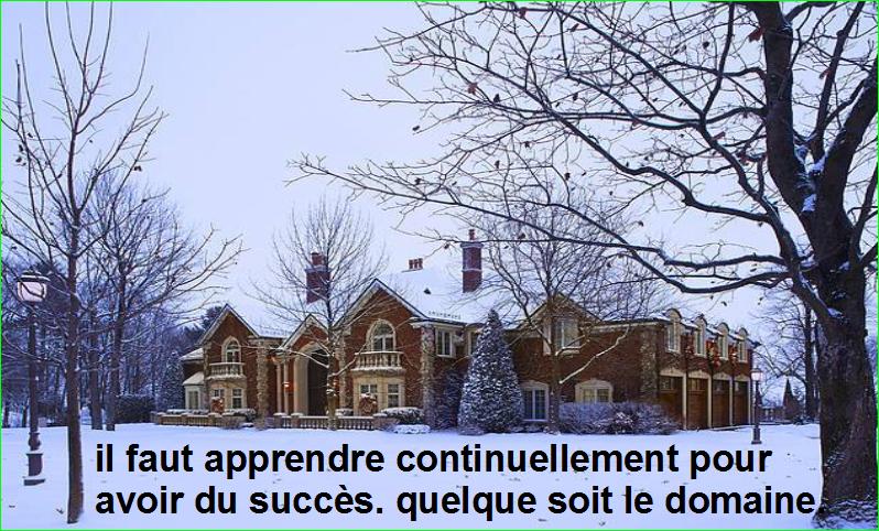 citation aurélien malecki. il faut apprendre continuellement pour avoir du succès. quelque soit le domaine