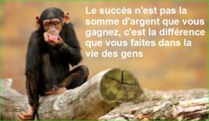 Le succès n'est pas la somme d'argent que vous gagnez, c'est la différence que vous faites dans la vie des gens. Citations Populaires et Célèbres Proverbes Aurélien Malecki