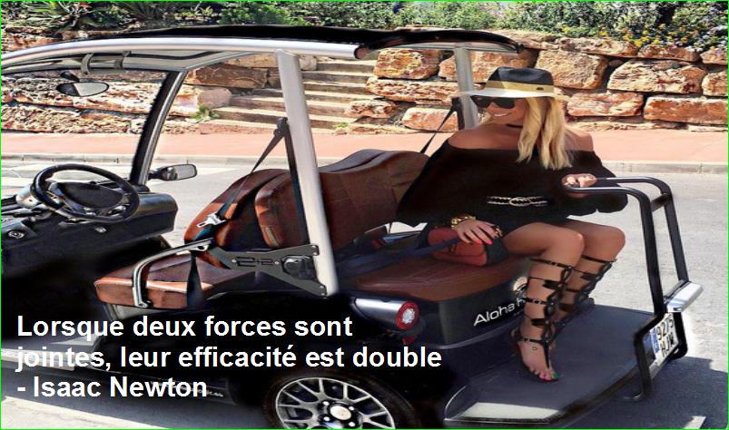 « Lorsque deux forces sont jointes, leur efficacité est double » - Isaac Newton