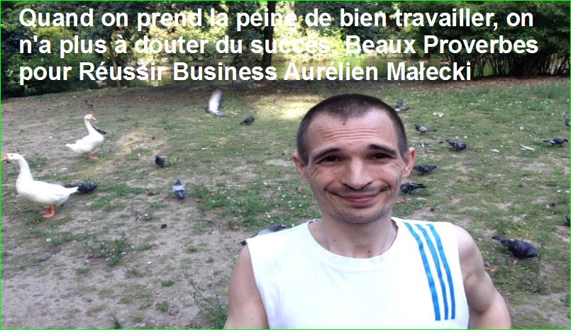 Quand on prend la peine de bien travailler, on n'a plus à douter du succès. Beaux Proverbes pour Réussir Business Aurélien Małecki