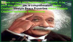 La paix ne peut être maintenue par la force; il ne peut être atteint par la compréhension. Belles Citations lifestyle Beaux Proverbes Albert Einstein Célèbres leadership Millionnaires