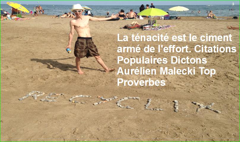 La ténacité est le ciment armé de l'effort. Citations Populaires Dictons Aurélien Malecki Top Proverbes