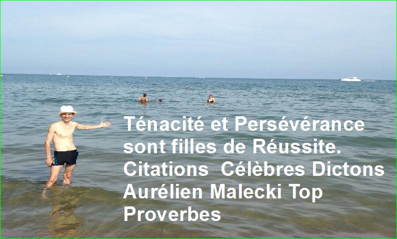 Ténacité et Persévérance sont filles de Réussite. Citations Célèbres Dictons Aurélien Malecki Top Proverbes