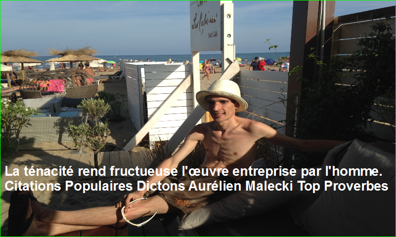 La ténacité rend fructueuse l'œuvre entreprise par l'homme. Citations Populaires Dictons Aurélien Malecki Top Proverbes