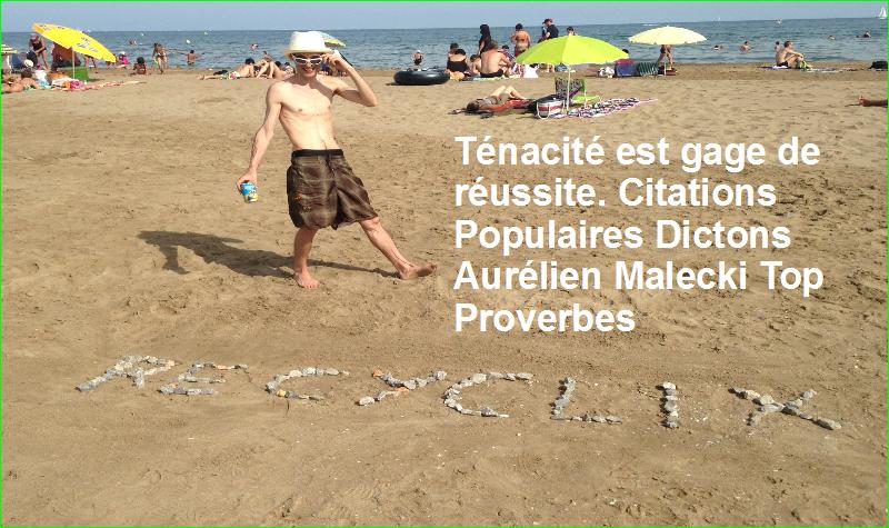 Ténacité est gage de réussite. Citations Populaires Dictons Aurélien Malecki Top Proverbes