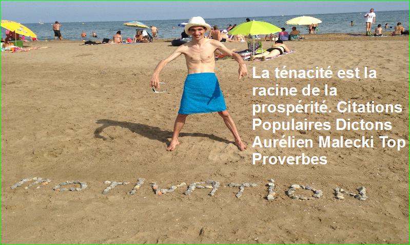 La ténacité est la racine de la prospérité. Citations Populaires Dictons Aurélien Malecki Top Proverbes