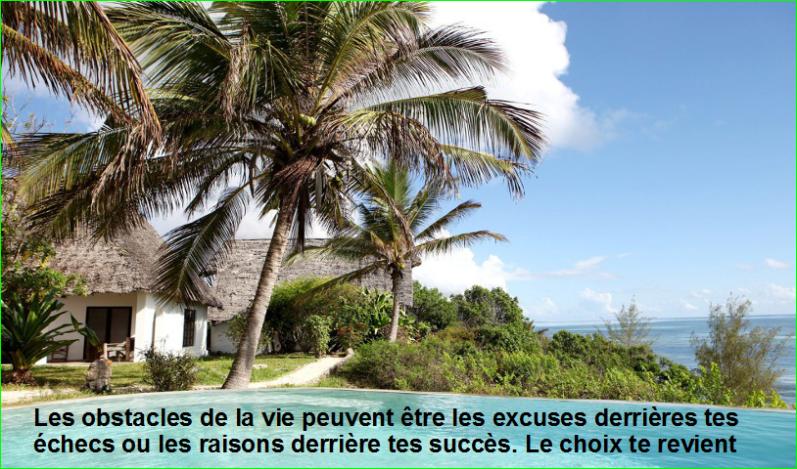 Les obstacles de la vie peuvent être les excuses derrières tes échecs ou les raisons derrière tes succès. Le choix te revient. Citations Populaires et Célèbres Proverbes Aurélien Malecki