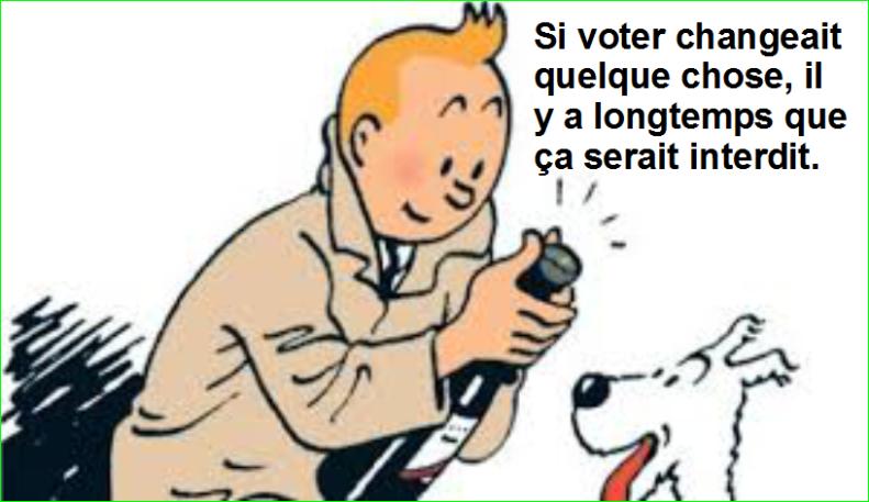 Si voter changeait quelque chose, il y a longtemps que ça serait interdit. Top Citation Humoristique Aurélien Malecki.