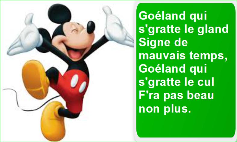 Goéland qui s'gratte le gland Signe de mauvais temps, Goéland qui s'gratte le cul F'ra pas beau non plus. Top Citation Humour Aurélien Malecki.