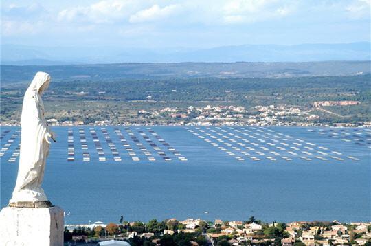 image photo Top 7 L'étang de Thau de la région Languedoc-Roussillon
