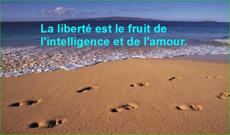 La liberté est le fruit de l'intelligence et de l'amour.Très Jolie Citation image photo de aurélien malecki