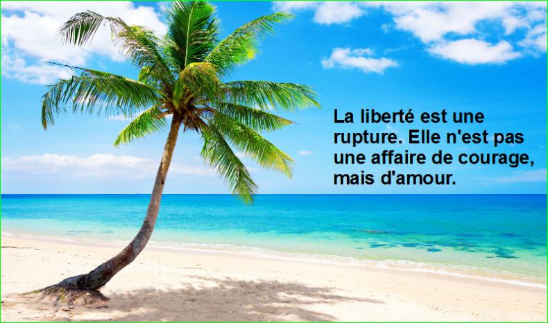 La liberté est une rupture. Elle n'est pas une affaire de courage, mais d'amour.Très Belle Citation image photo de aurélien malecki