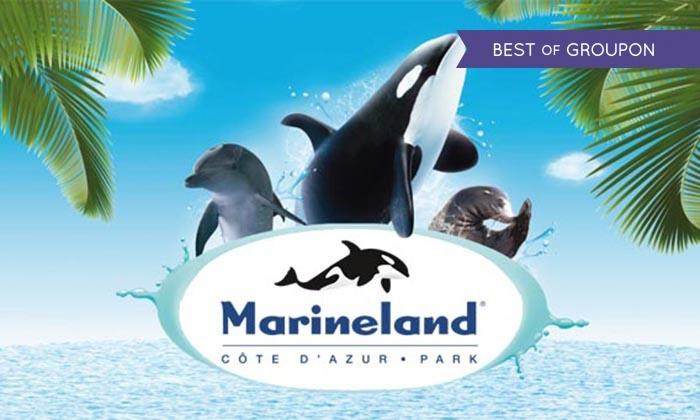 Marinelanddans les Alpes-Maritimes image photo Top Meilleurs Parcs d'Attractions de France et d'Europe aurélien malecki