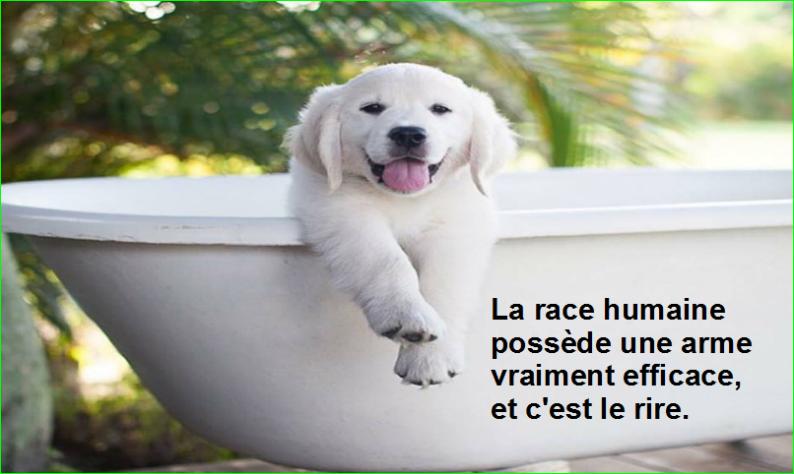 La race humaine possède une arme vraiment efficace, et c'est le rire.Citation Mark Twain célèbre photographie image aurélien malecki
