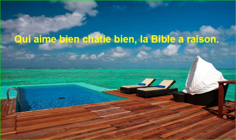 Qui aime bien châtie bien, la Bible a raison. Citation Mark Twain célèbre photographie image aurélien malecki
