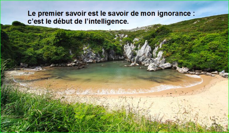 Le premier savoir est le savoir de mon ignorance : c'est le début de l'intelligence.Citation Socrate top image photographie aurélien malecki