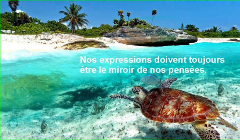 Nos expressions doivent toujours être le miroir de nos pensées. Citation Socrate top image photographie aurélien malecki